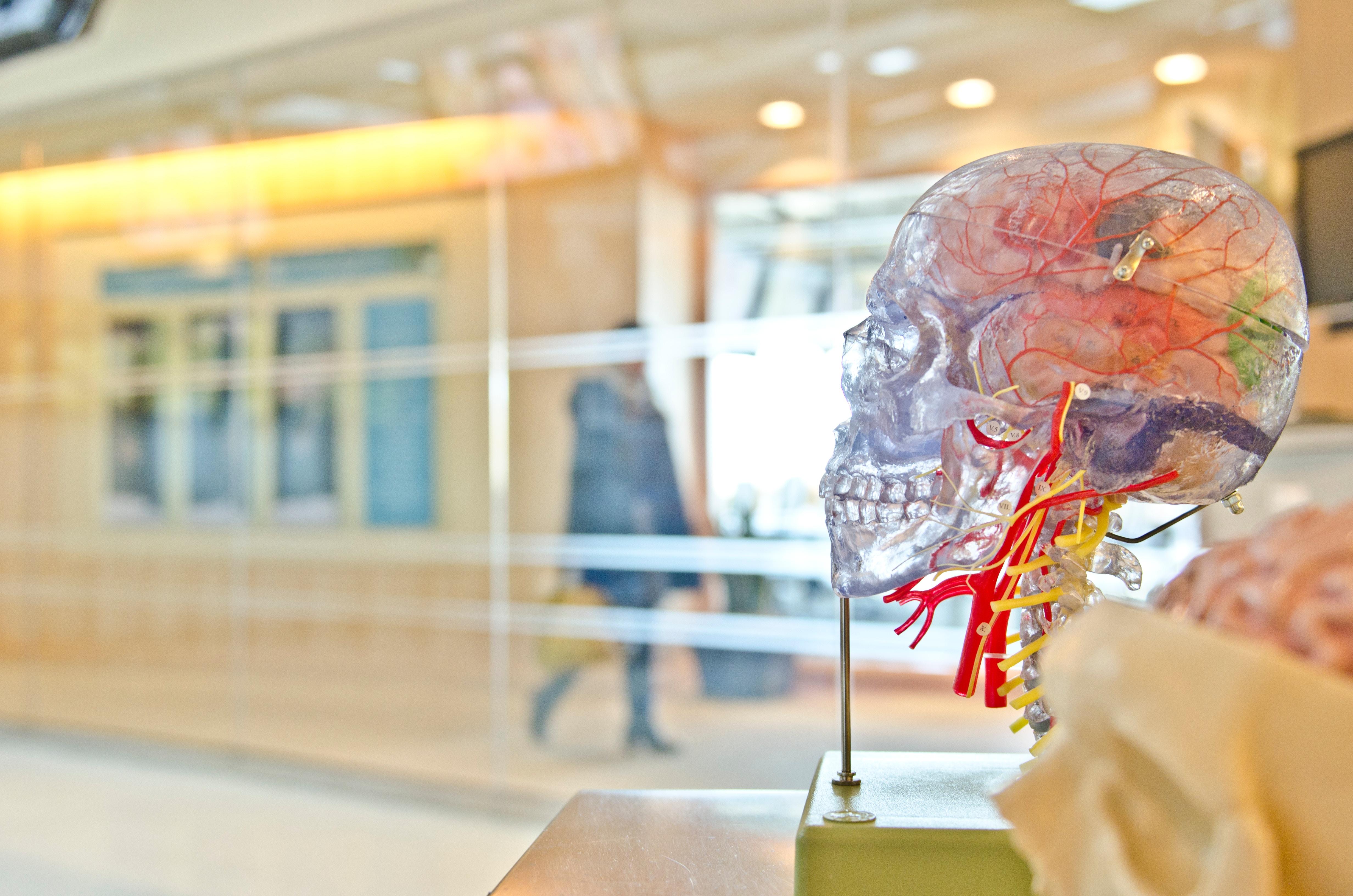 medical-devices.jpg