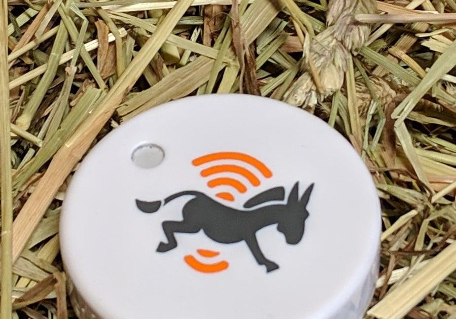 farm-jenny-sensor